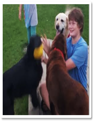 Aaron with dogs