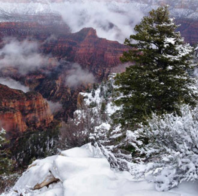 Crand Canyon in Snow 1