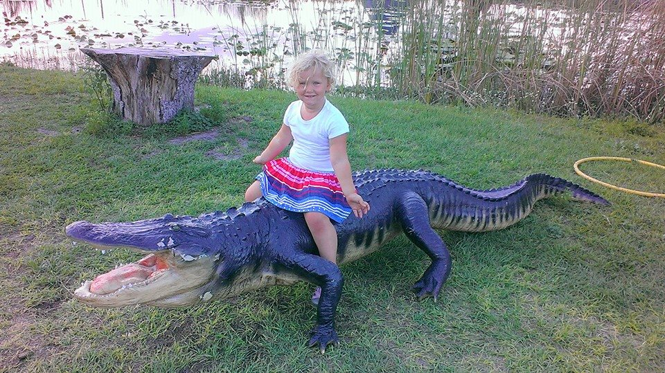 aurora on gator